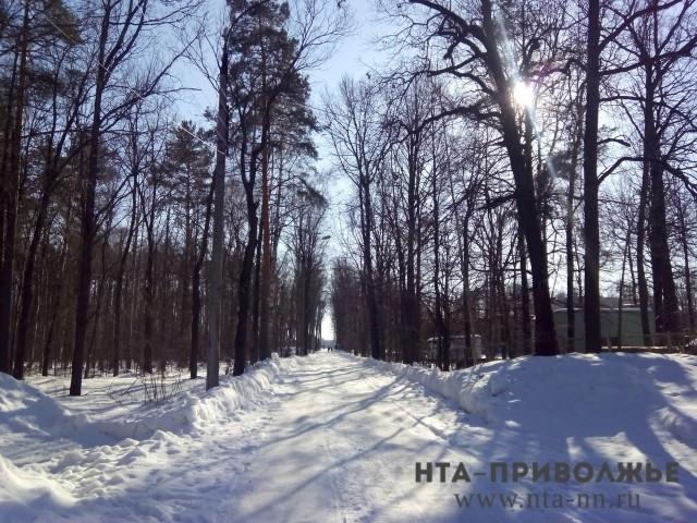 Снег и кое-где метелица ожидаются в российской столице ввыходные