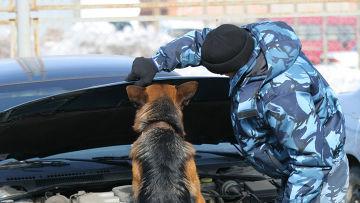 Досмотр автомобиля охранником влага