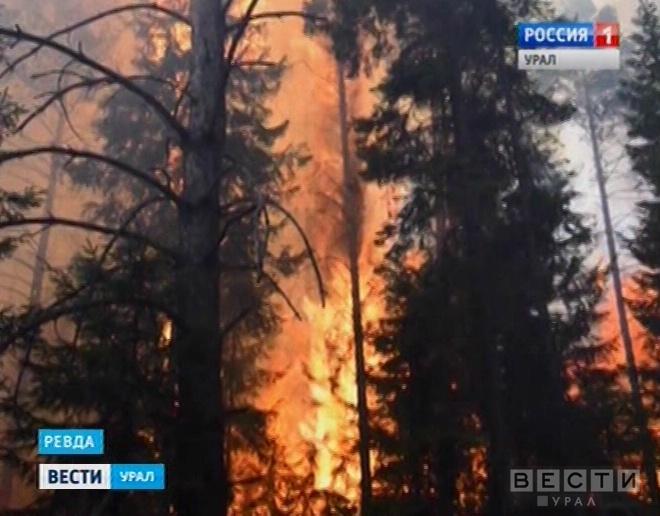 Площадь лесных пожаров в РФ засутки сократилась на12%