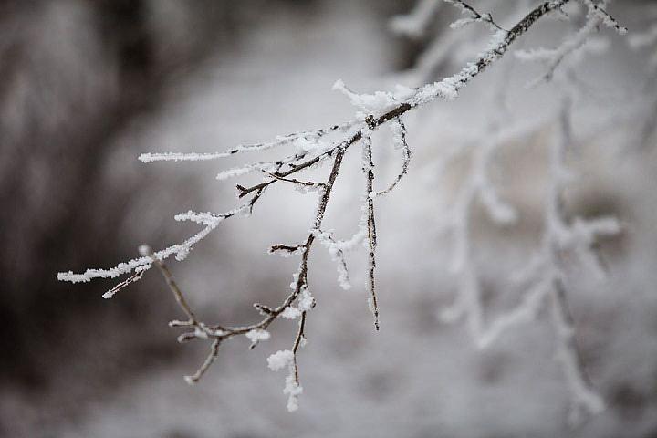 Потепление идет назамену морозам наЮжном Урале
