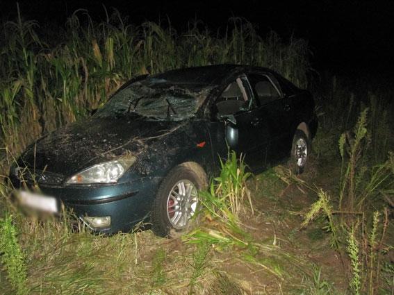 Нетрезвый шофёр сбил насмерть ребенка вЧерниговской области