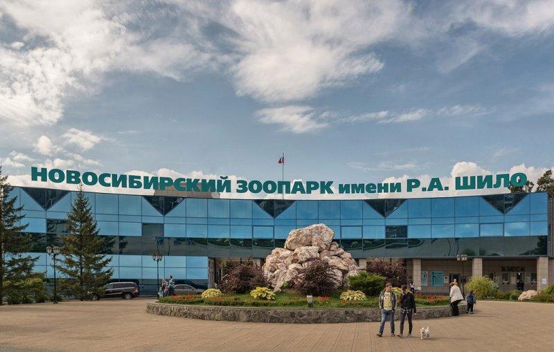 Топ-10 зоопарков России. Новосибирский зоопарк