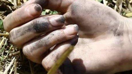 Схвачен подозреваемый визнасиловании иубийстве 37-летней алматинки