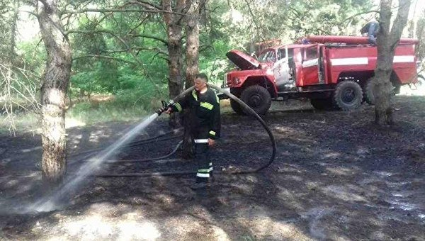 ВХерсонской области гасят лесной пожар наплощади 10 га