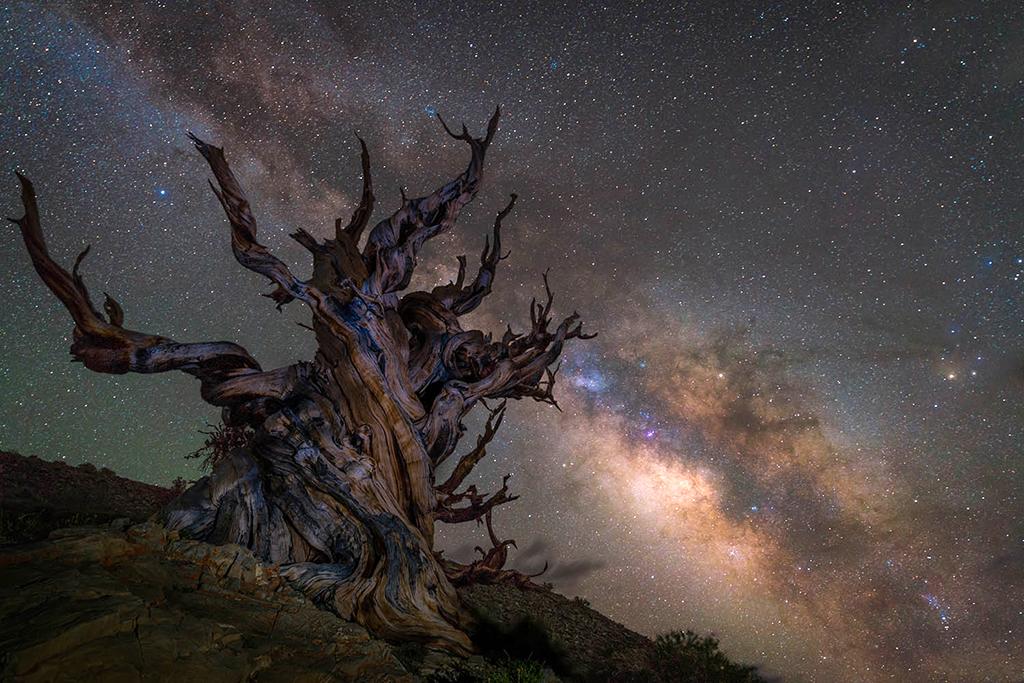 Самый зрелищный звездопад    Image574023_498bf06a11e3a63ae8e32108873415b5
