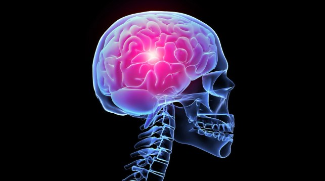 Шизофрения может быть результатом эволюции человеческого мозга— Ученые