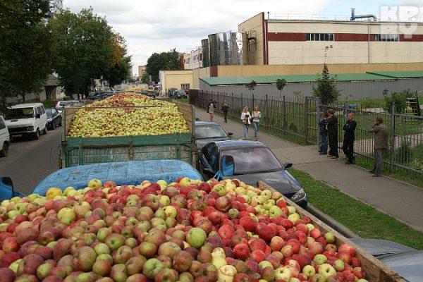 Россельхознадзор может запретить ввоз через Казахстан плодоовощной продукции изСербии иМолдовы