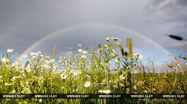 Жара возвращается. Прогноз погоды на20-22июля вКазахстане Избранное