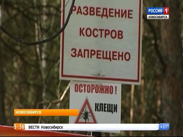 1666 граждан Иркутской области пострадали отукусов клещей