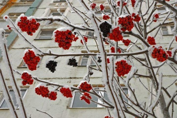 Ввыходные дни вВолгограде будет морозно иснежно