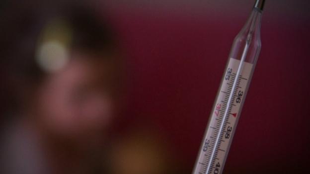 ВоВладимирской области начинается иммунопрофилактика против гриппа
