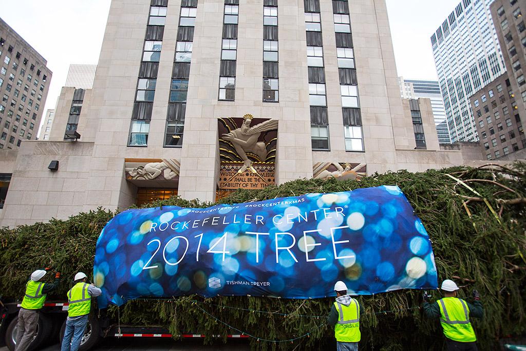 В Нью-Йорке установлена главная рождественская ёлка США