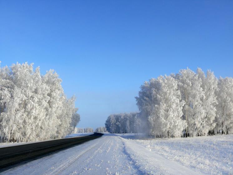 термобелья погода в калачинске на декабрь стоит беспокоиться