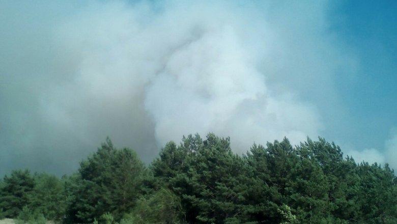 Взоне отчуждения ЧАЭС произошел пожар