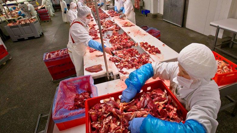 Профессионалы Россельхознадзора искали набелорусских предприятиях украинскую говядину