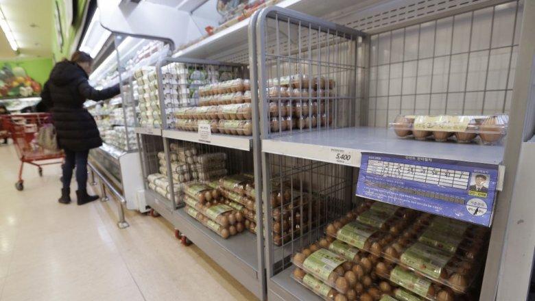 ВЮжной Корее найден высокопатогенный штамм вируса птичьего гриппа
