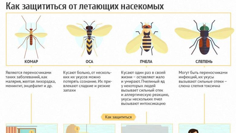 g33684177_ca380f1b572074e59b78f093e8acab6e Кровь течет рекой. Кого комары кусают чаще и почему