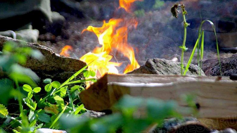 Лесной пожар наплощади 20 галокализован вЧелябинской области