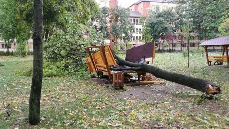 Разрушительный циклон изРумынии все-таки затронул государство Украину