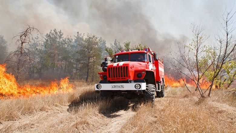 Площадь лесных пожаров вСибири утроилась засутки