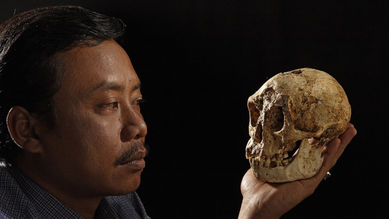 Ученые: люди могли жить бок о бок с хоббитами на острове Флорес