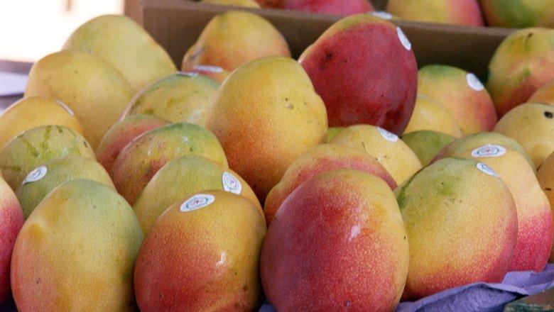 ВЯпонии два манго продали за4 тысячи долларов