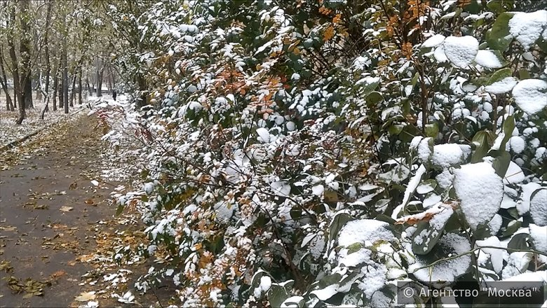 Снежные выходные ожидаются вИркутской области
