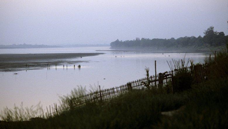 ВоВьетнаме вбассейне реки Меконг найден новый вид брюхоногих моллюсков