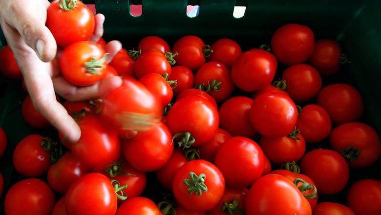 Некладите помидоры вхолодильник: уних мёрзнут гены