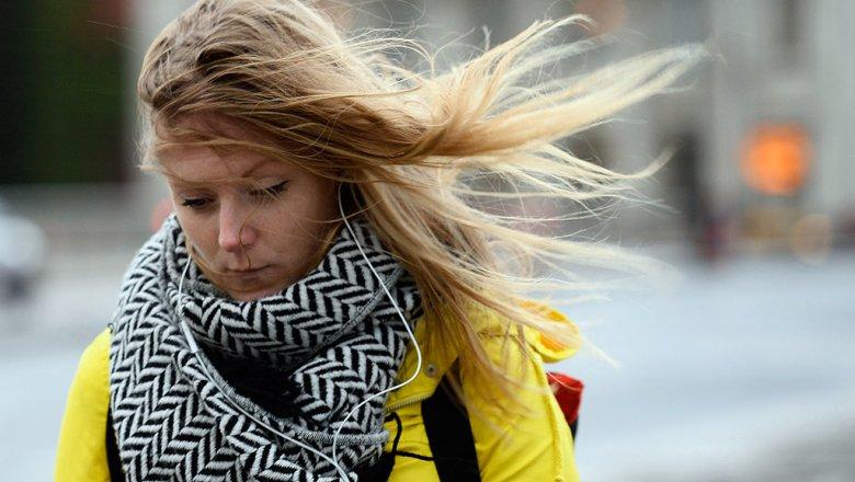 МЧС предупреждает жителей столицы осильных порывах ветра иснегопаде