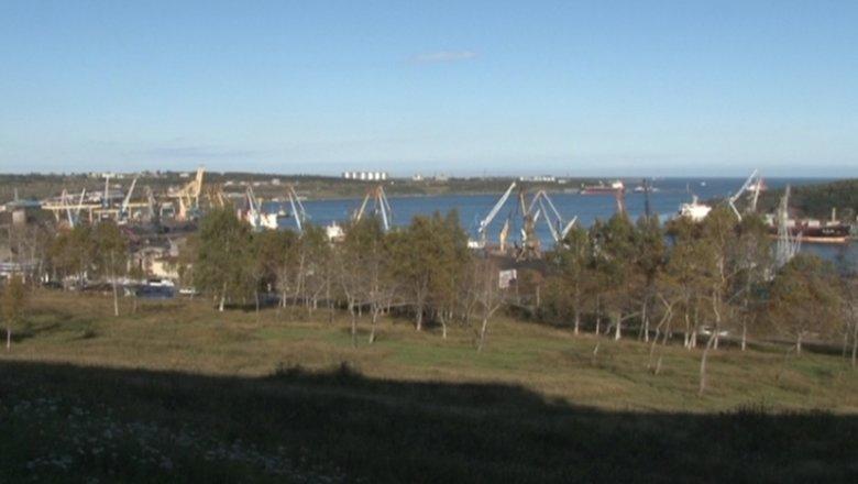 Трутнев анонсировал открытие свободных портов вДФО доконца года