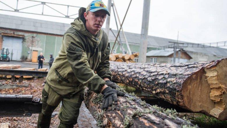 Владимир Путин предложил остановить экспорт кругляка