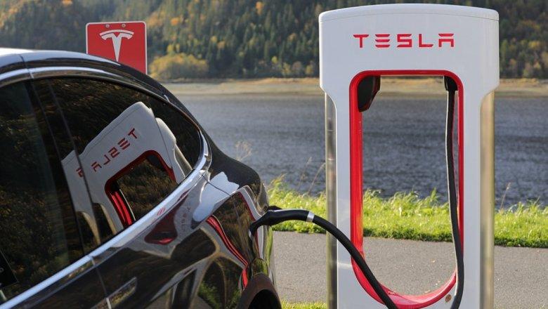 Илон Маск назвал стоимость пикапа Tesla