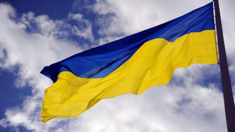 ЦИК Молдавии объявил Додона победителем президентских выборов