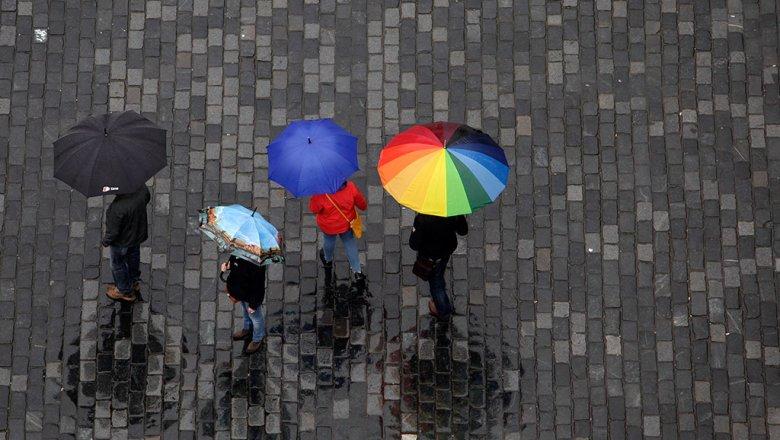Дожди вМосковском регионе продлятся  всамом начале  следующей недели