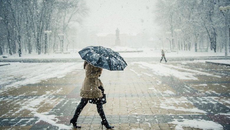НаКубани предполагается сильное налипание мокрого снега Фото