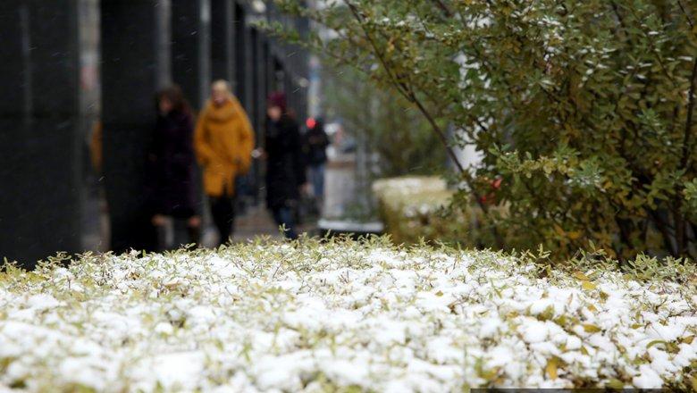 Сырая иветреная погода ожидается в столице иПодмосковье