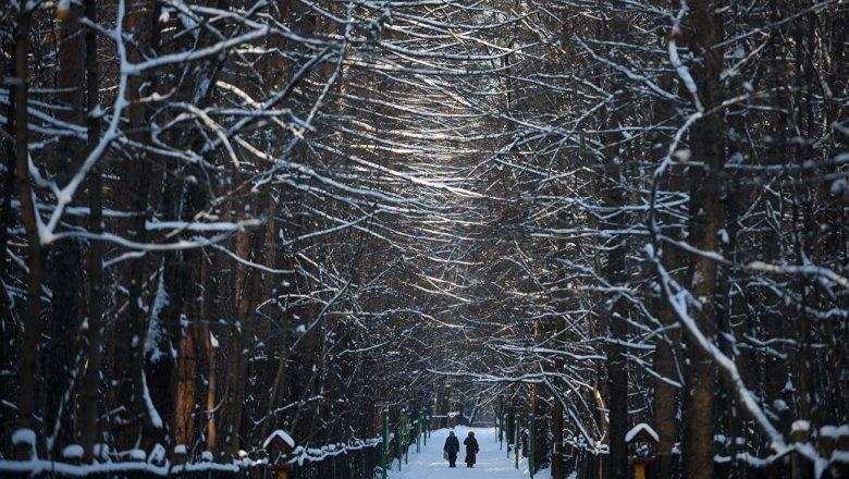 Синоптики обещают 10-градусные морозы кконцу недели в столице